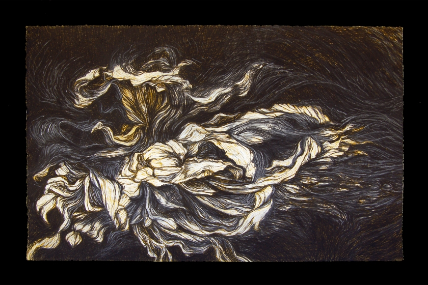 Black Dahlia | Conte Crayon, ink and gouache on white paper | 25 x 44"